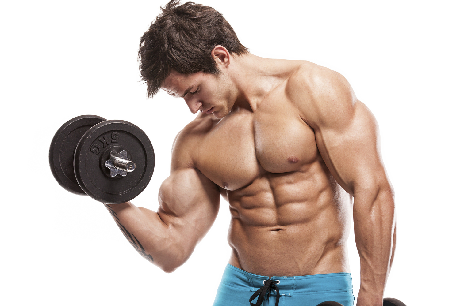 Shred FX Testosterone Support